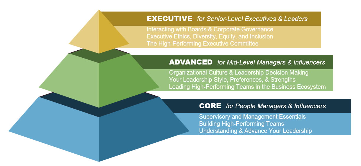 Graphic of the Leadership Development Program Structure